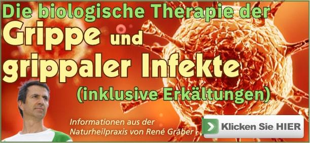 Buch: Die biologische Therapie der Grippe